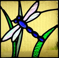 Dragonfly detail from stained glass window